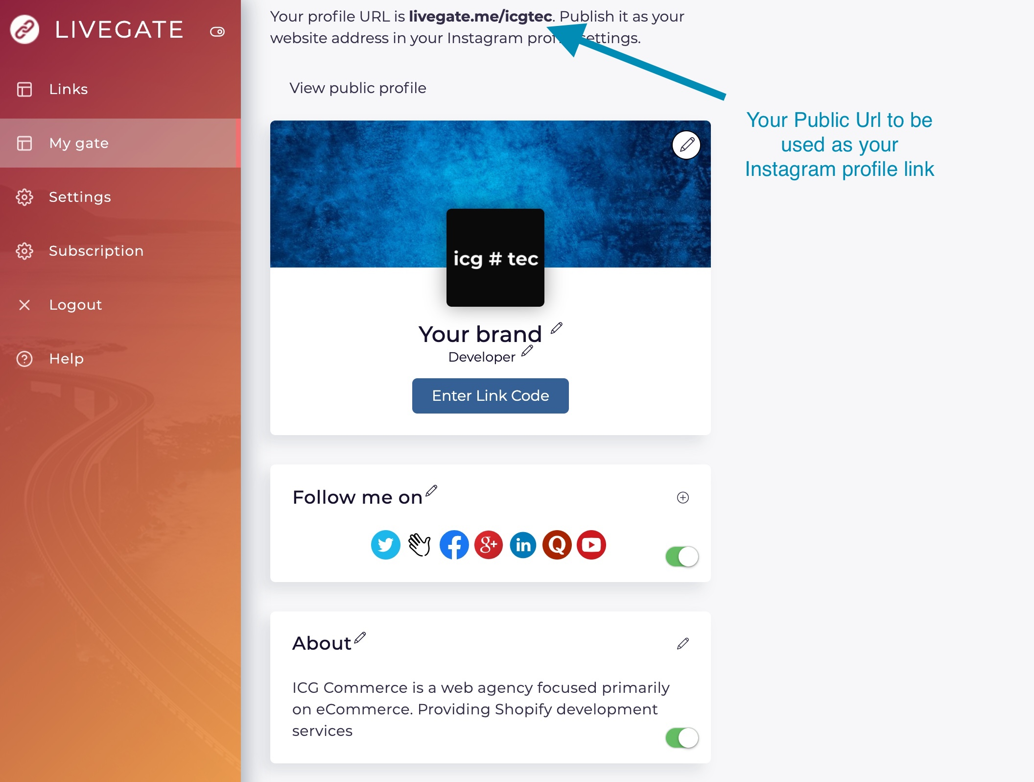Customizing your link in bio with Livegate